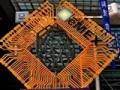eMEX 2011 中国苏州电子信息博览会——ZOL商用事业部